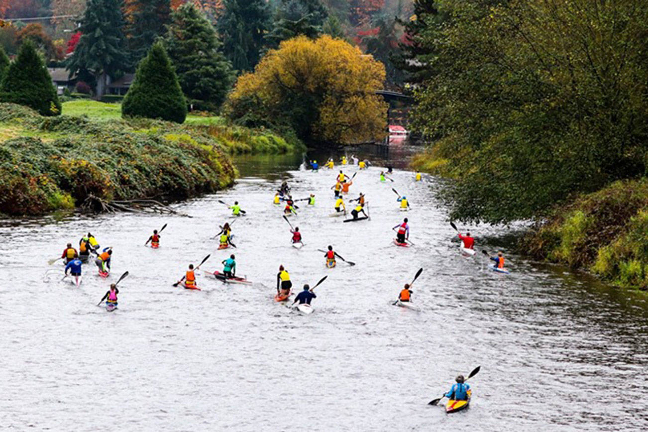 Canoe and kayak racers compete on Sammamish River in Bothell